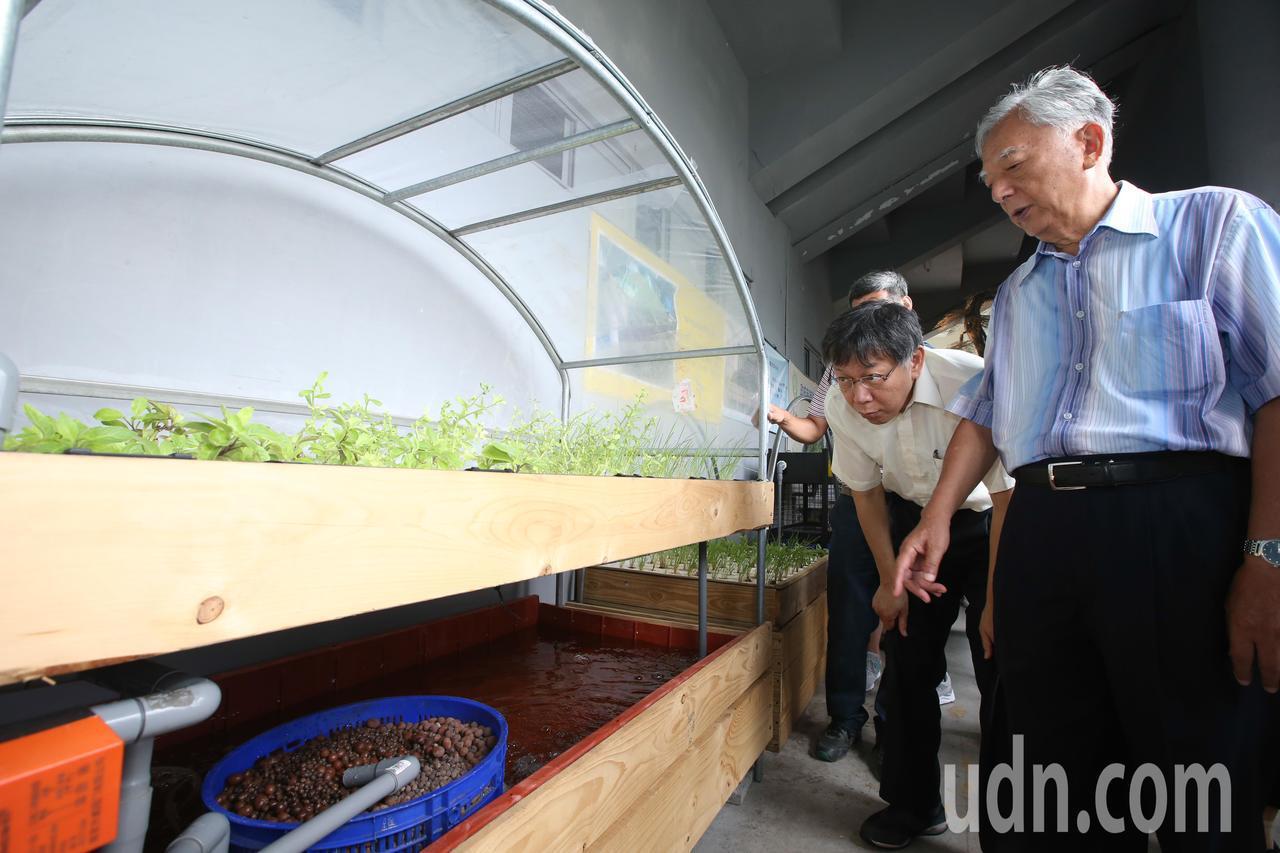 台北市長柯文哲(左)與前台北市長黃大洲(右)一同出席園圃生活節,參觀魚菜共生設施...