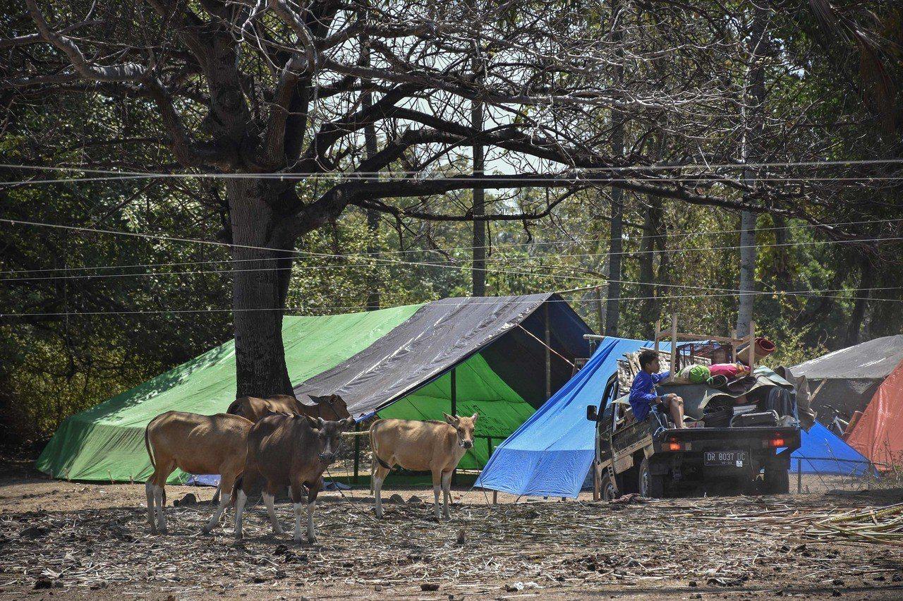 印尼許多地震災民災後以帳篷為家。法新社