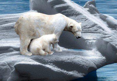 北極圈內出現30℃以上的破表高溫愈趨頻繁。圖/pixabay
