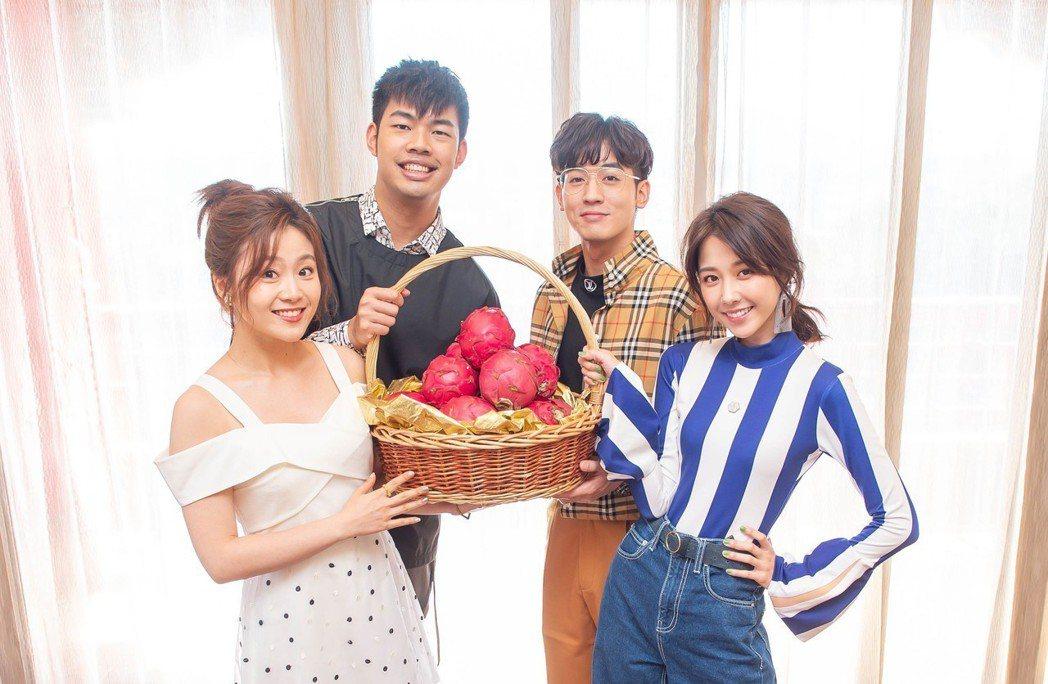 邵雨薇(右起)、小樂、陳大天、楊小黎為收視慶功。圖/台視提供
