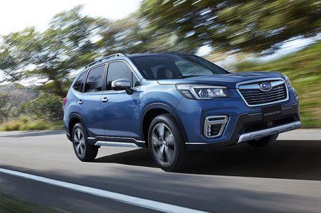 日本Subaru Forester接單超越月販售目標5倍!節能車型表現出乎意料