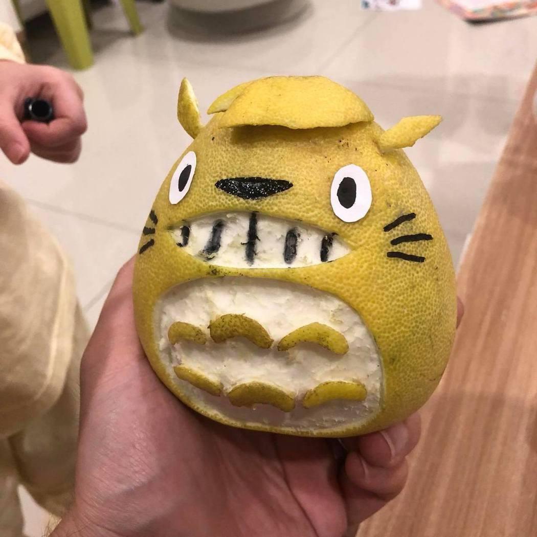 龍貓。 圖片來源/爆廢公社