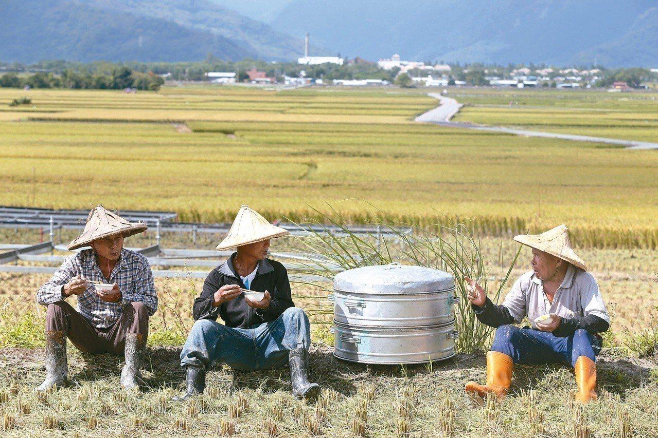 農業保險法草案拚下會期進立院。圖/聯合報系資料照片