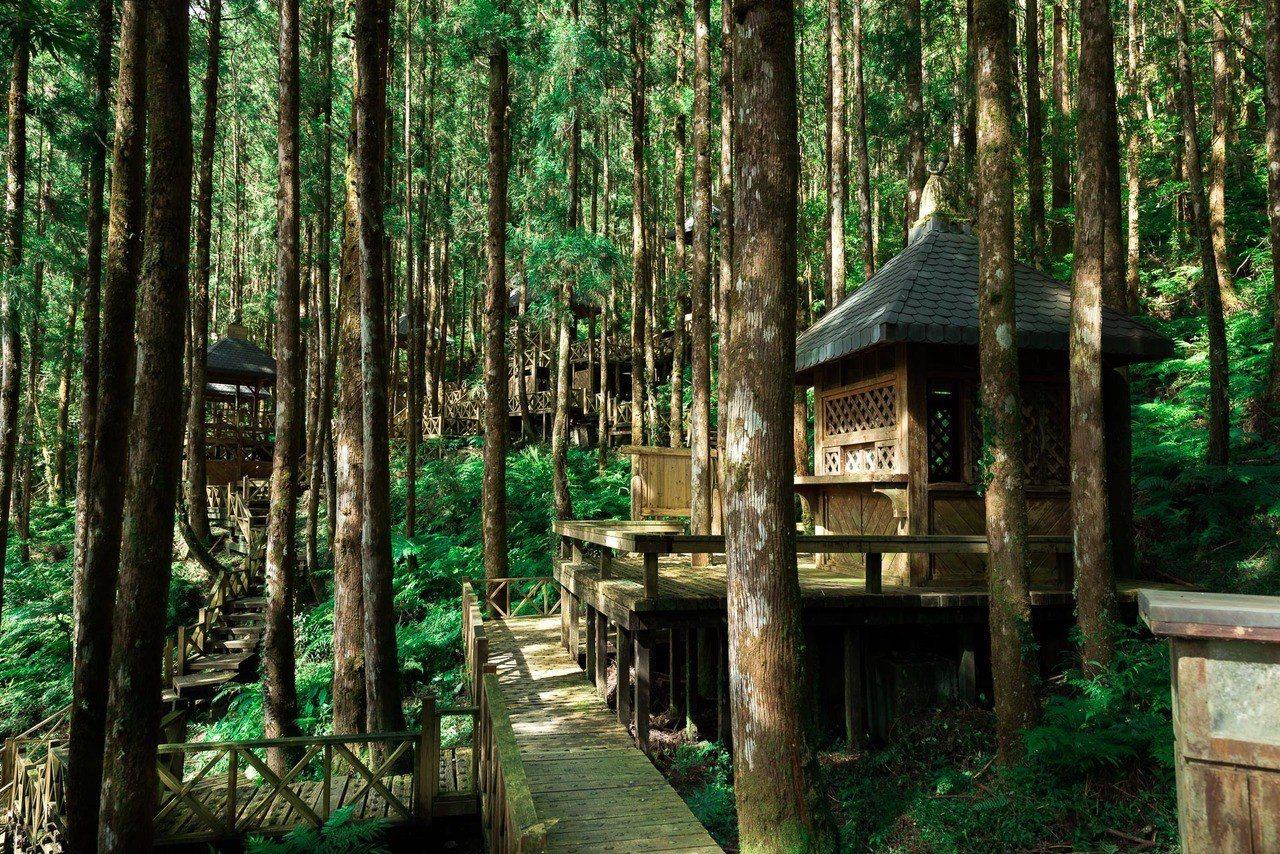 明池森林步道。圖/力麗觀光提供
