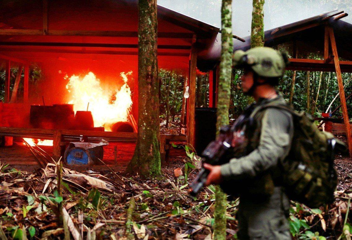 哥倫比亞反毒部隊燒毀山區古柯鹼工廠的資料照片。 圖/路透社