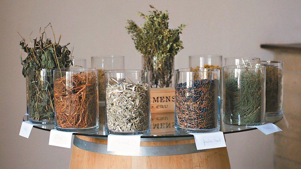 自然動力法的製劑主要為蓍草、春日菊等發酵轉化而成。 圖/林裕森