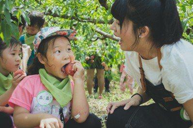 小人小學把教室移到竹林、茶園和森林等大自然場域,讓孩子與父母學習和大自然相處。圖...