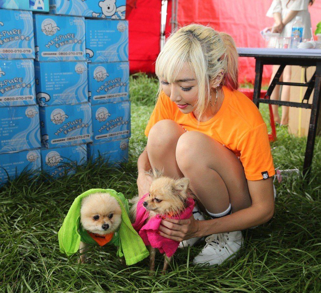 李宓帶愛犬參加公益活動。圖/李宓的秘密基地提供