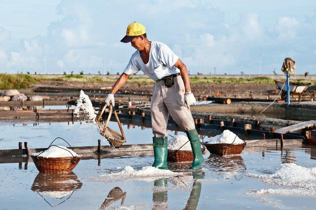在南台灣烈日下,勤奮工作的曬鹽人。 圖片提供╱蔡炅樵