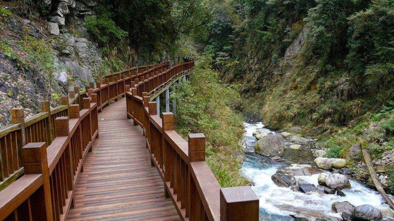 八仙山的天籟步道。圖/東勢林場提供