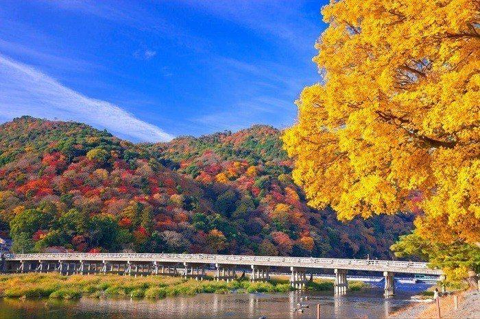渡月橋。 圖/jp.zekkeijapan.com