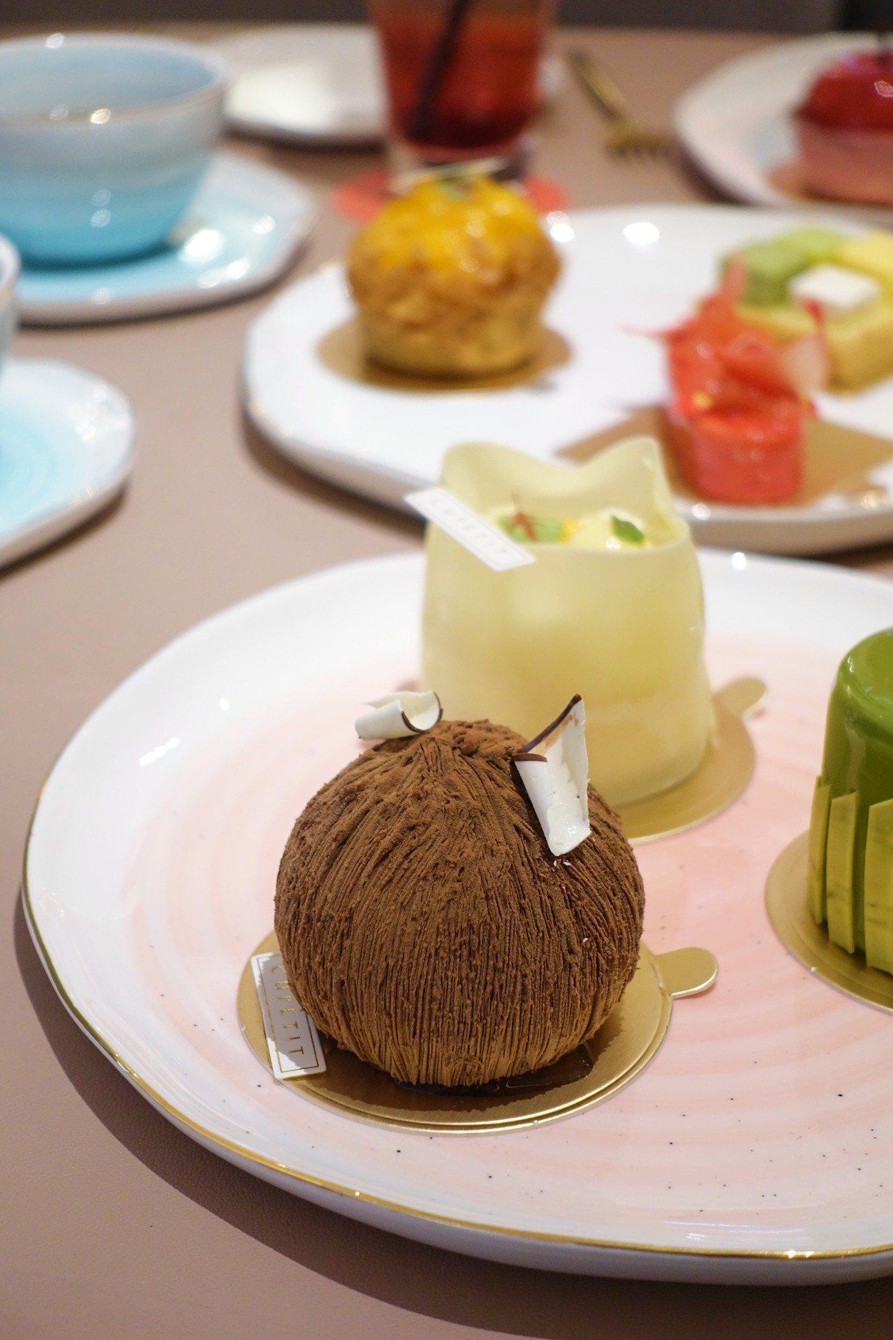 毛阿娜外型貌似椰子。記者沈佩臻/攝影