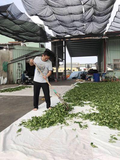李坤洲不僅專注在茶葉生產,更積極參與社團活動,累積人脈。圖/李坤洲提供