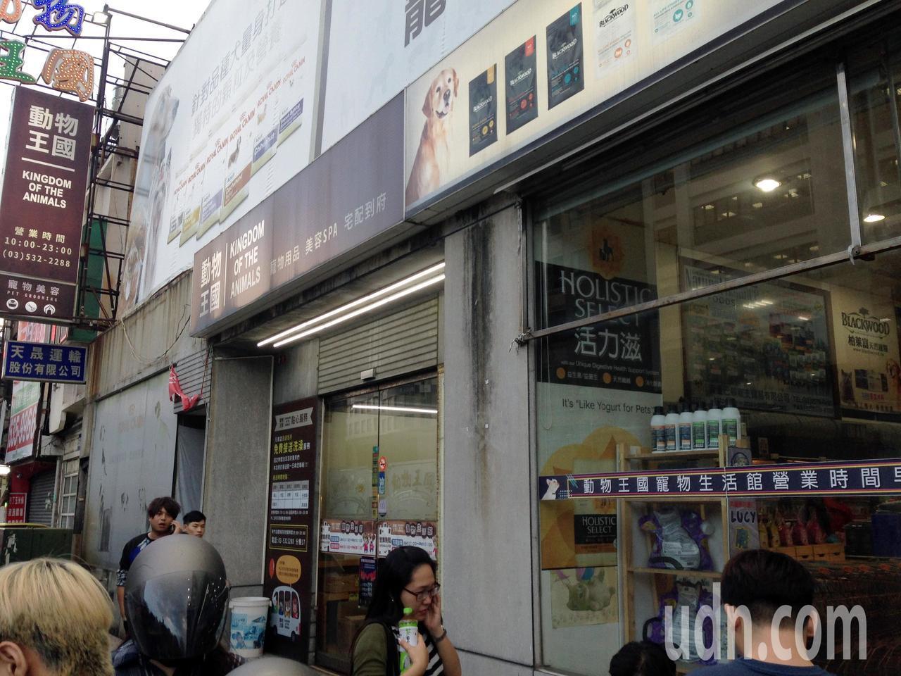 動物王國新竹店倒閉,不少民眾前來想認養貓、狗,但店內貓、狗已全數送養。記者郭宣彣...
