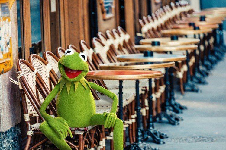 科米蛙在巴黎的咖啡館。圖/sandro提供