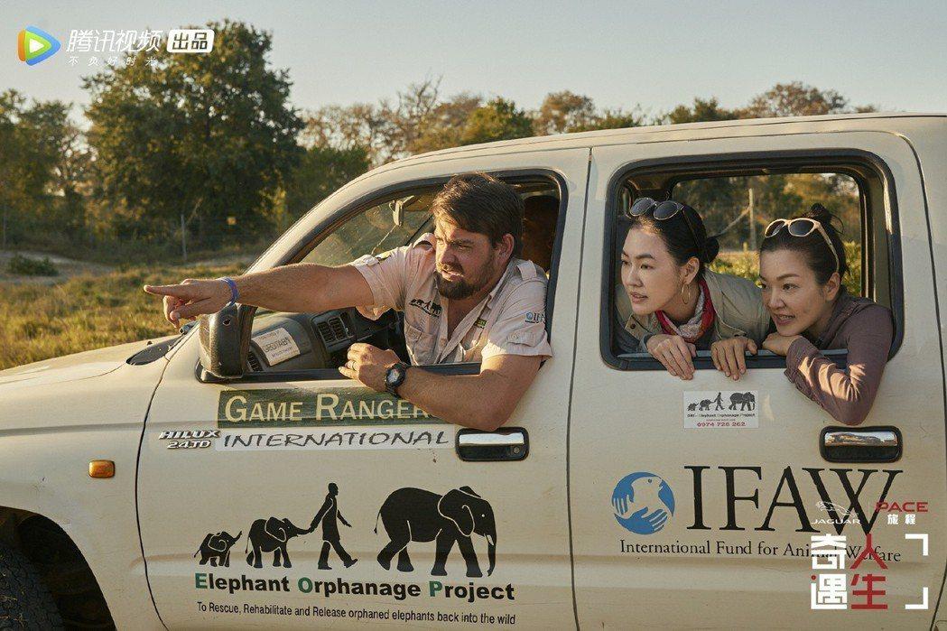 小S(中)與阿雅(右)到非洲探訪大象。 圖/擷自奇遇人生微博
