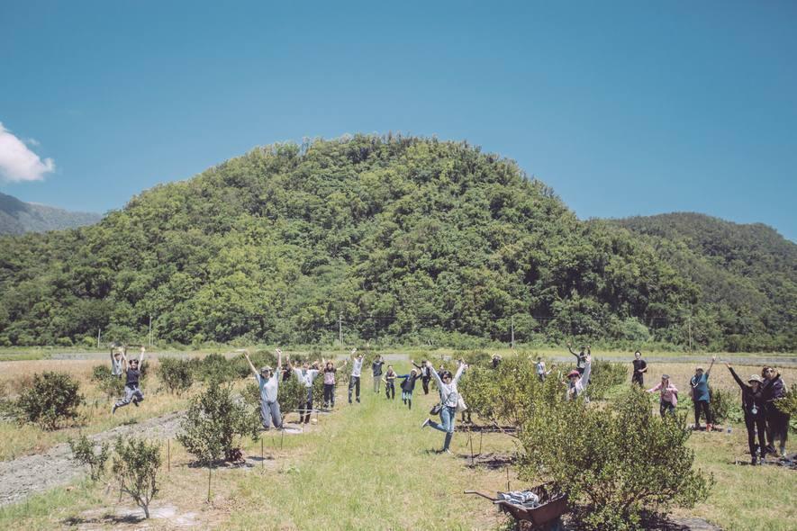(圖)石碇契作農場立牌展開苦茶油復興之路(上)、茶籽堂全體員工於宜蘭南澳農場參與...