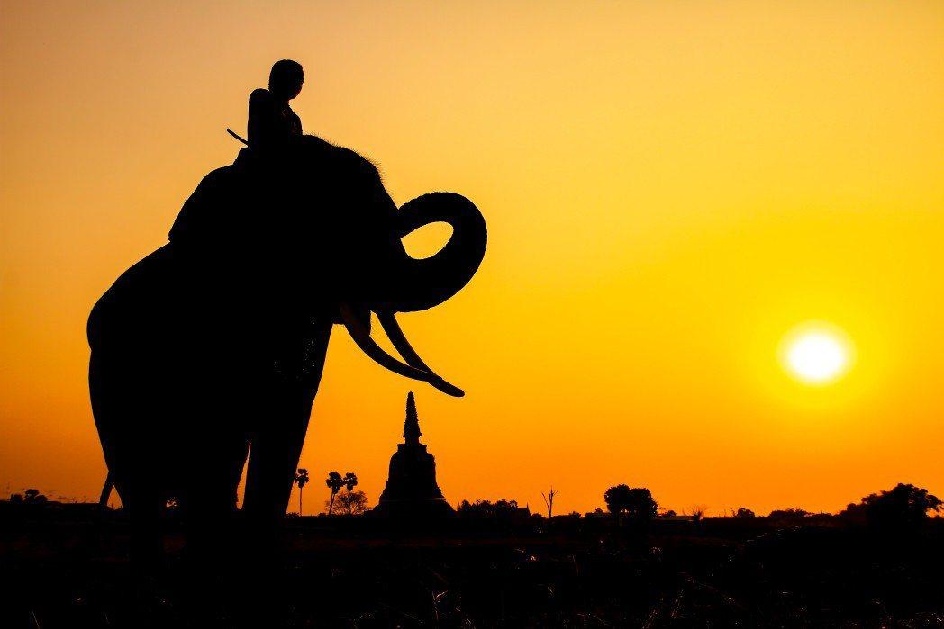 大象 Skyscanner