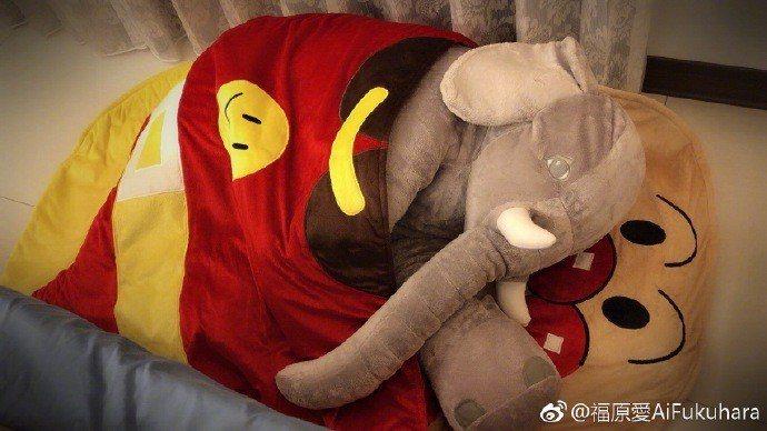 新成員原來是一隻大象玩偶。圖/摘自微博
