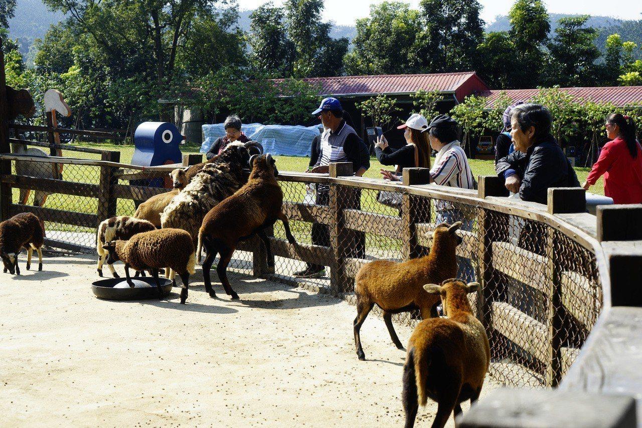 中埔獨角仙農場。圖/嘉義縣文化觀光局提供