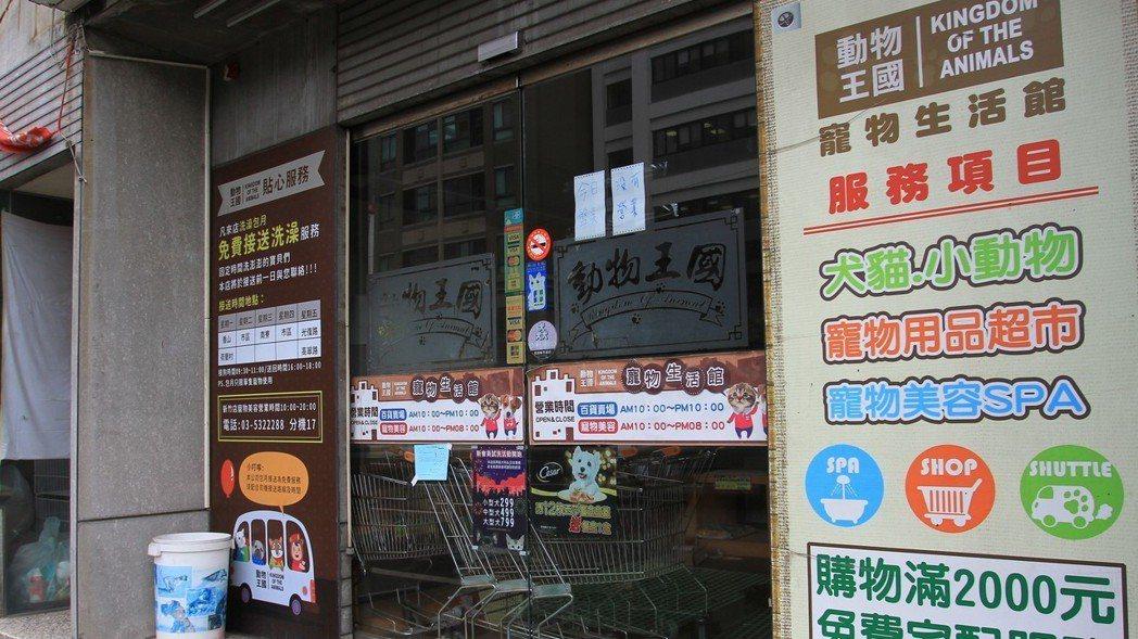 動物王國新竹店今天沒有營業,但仍有店員在裡面盤點貨物。記者郭宣彣/攝影