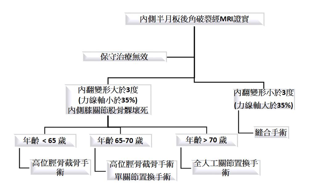 台北醫學大學附設醫院歸納整理出系統性的治療選擇方案。圖/吳家麟醫師提供