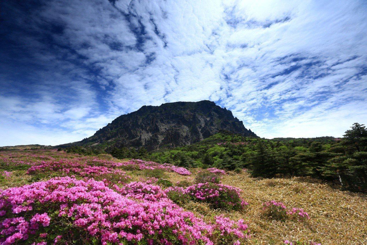 漢拏山(漢拿山) 한라산。 圖/joinsmediacanada.com