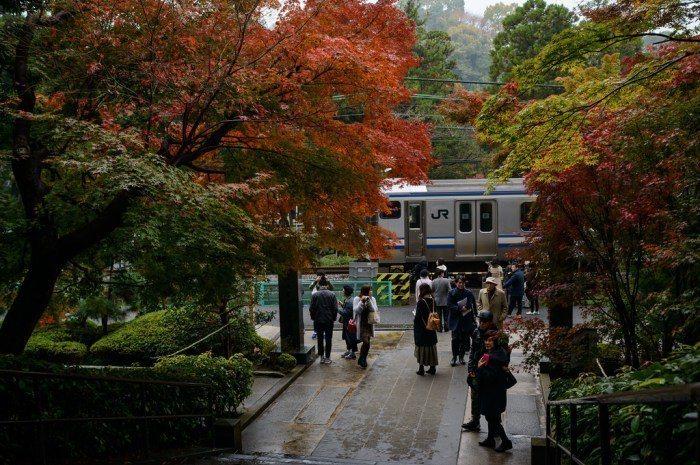 鎌倉。 圖/Flickr