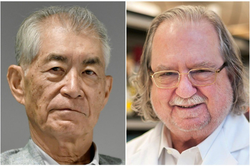 諾貝爾醫學獎得主艾利森(右)和本庶佑(左)。(路透)