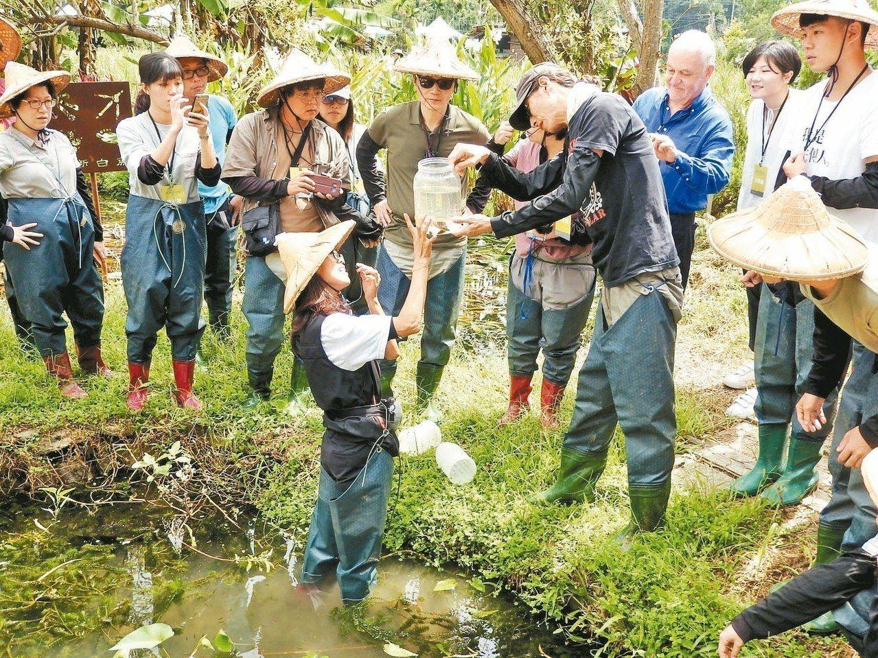 埔里鎮一新社區農民帶國外學者和青農,在台灣白魚生態復育池瞭解復育情形。 記者賴香...