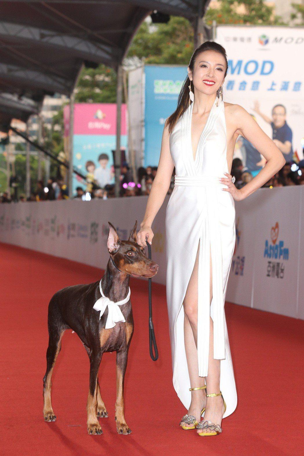第五十三屆金鐘獎,安妮走星光大道。記者陳立凱/攝影