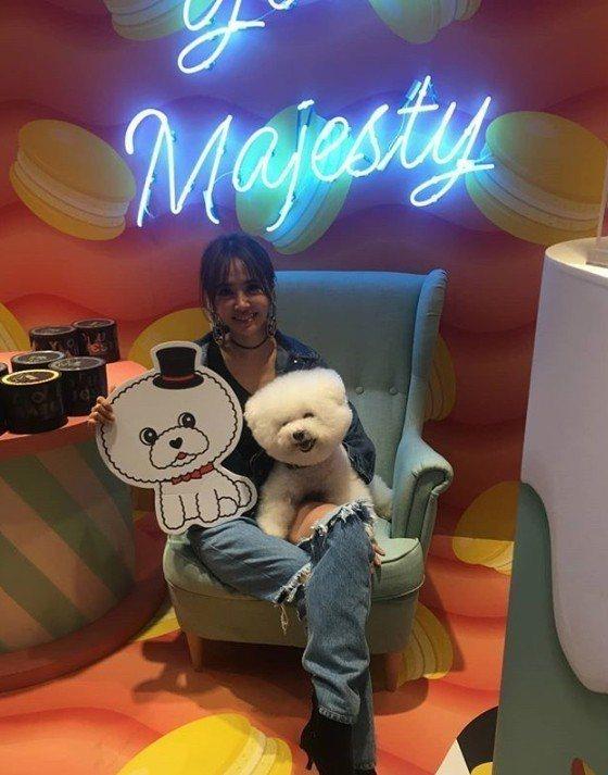 蔡依林6日下午帶愛犬屋虎出席她的翻糖蛋糕實體店快閃活動。圖/摘自IG