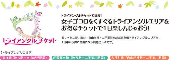 交通票券。 圖/www.tokyu.co.jp