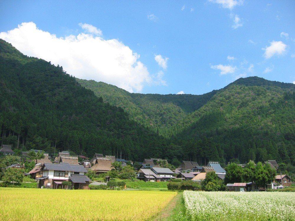 ▲京都美山町合掌村-蕎麥花景。(圖/森之京都DMO)