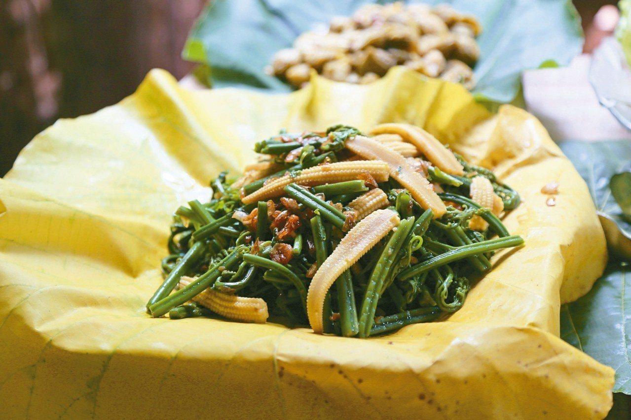 過貓是在山裡面最常見的一種野菜,也是部落的家常菜。 記者魏妤庭/攝影