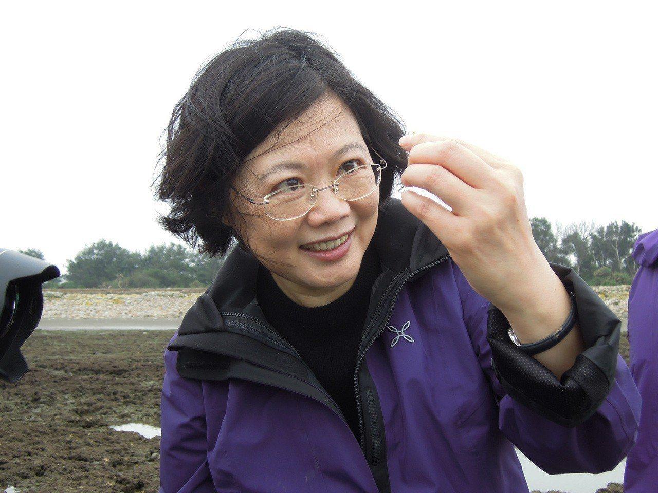 蔡英文總統(見圖)2013年4月20日參加桃園藻礁活動,非常仔細觀察藻礁生態小生...