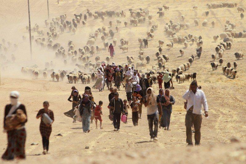 伊斯蘭國針對亞茲迪人實行種族滅絕。圖為居住在辛賈爾的亞茲迪人步行進入敘利亞邊界,...