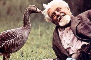 找到人與動物的最適距離:《和動物說話的男人》評介