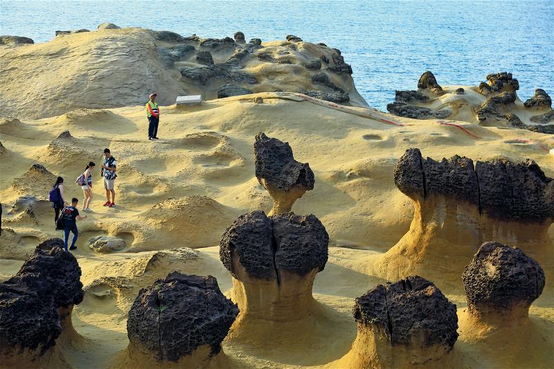 野柳地質公園裡,隨處可見「節理」在岩層脆弱面切割的軌跡。