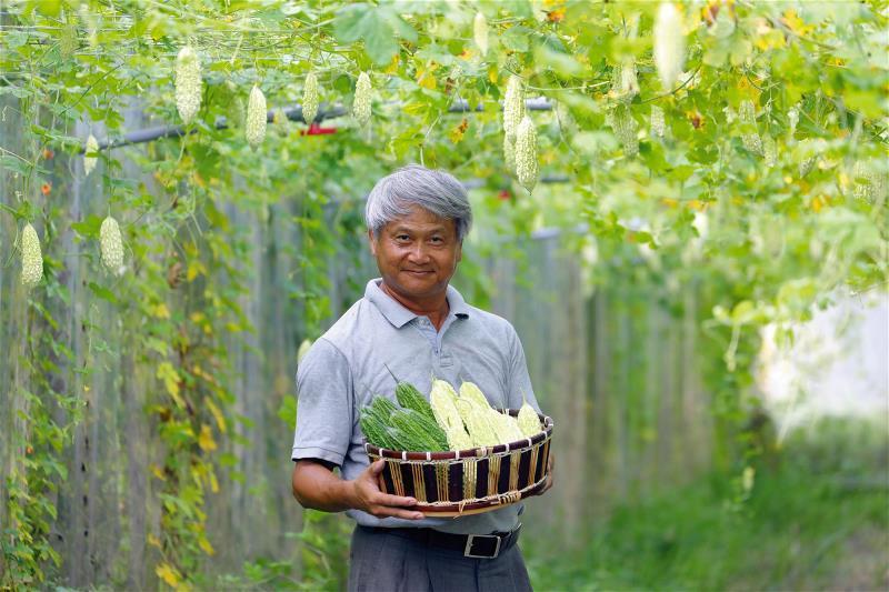 奇萊美地有機農場總經理蔡志峰,所種植花蓮2、6號苦瓜,無農藥殘留,可以生吃作沙拉...