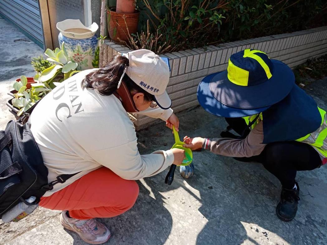 疾管署持續動員加強社區病媒孳生源查核。圖/疾管署提供