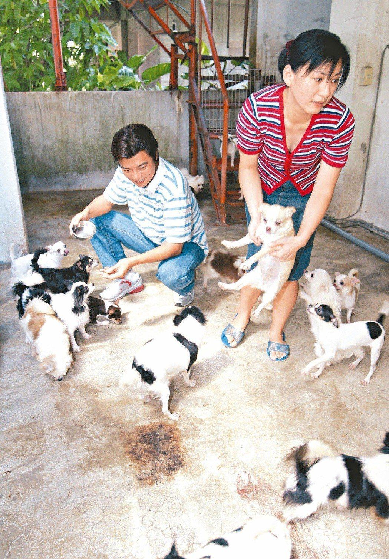張佩華(左)和太太都很愛狗。本報資料照