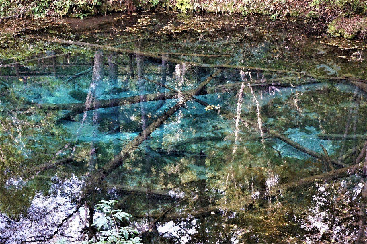 阿寒國立公園裡神之子湖的美麗湖水。 圖/背包客棧