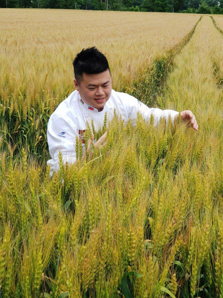 王鵬傑親自前往北海道挑選最適合做麵包與吐司的小麥,作為製作全聯Read Brea...
