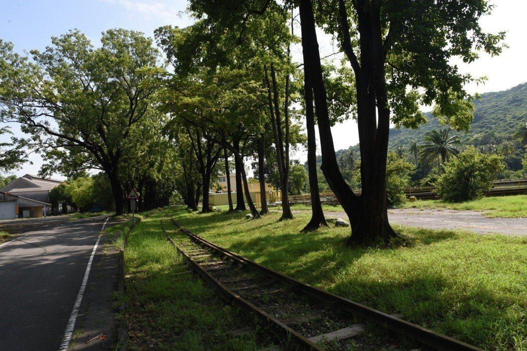 中油煉油廠廠區遺留之鐵道文化財,植栽是處理煉油廠污染的方式之一。 圖/作者自攝
