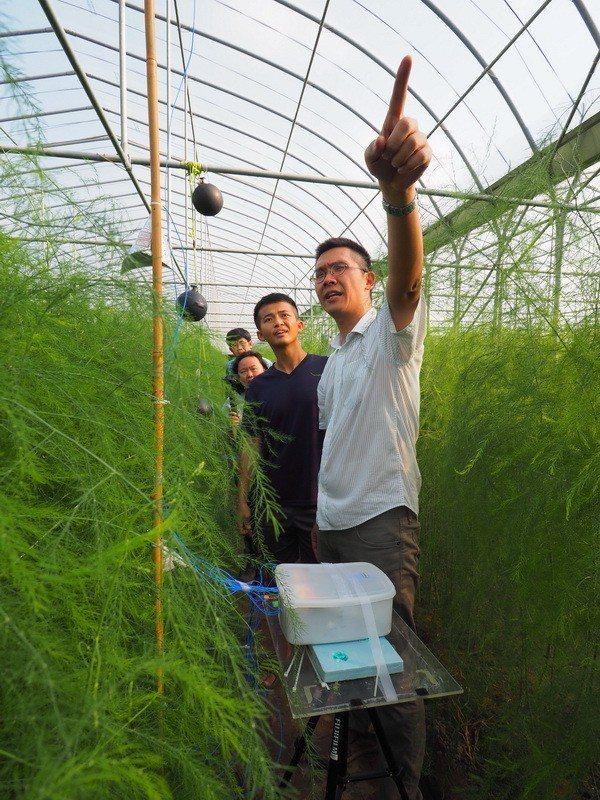 成大團隊以智慧澆灌系統協助青農對抗高溫。圖/成大提供