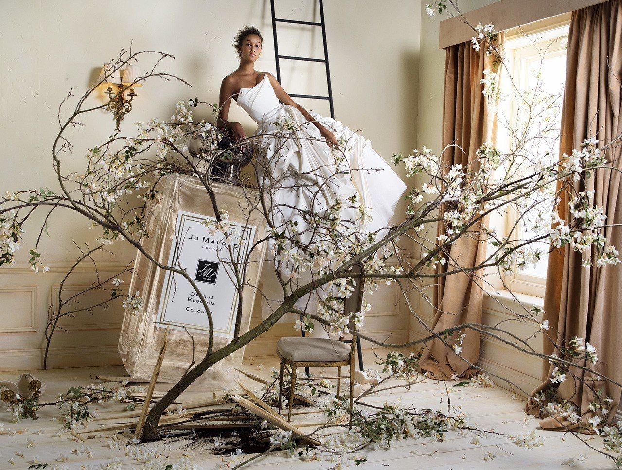 Jo Malone精選6款象徵最具代表性的甜蜜香調推出全新的婚禮蕾絲系列。圖/J...