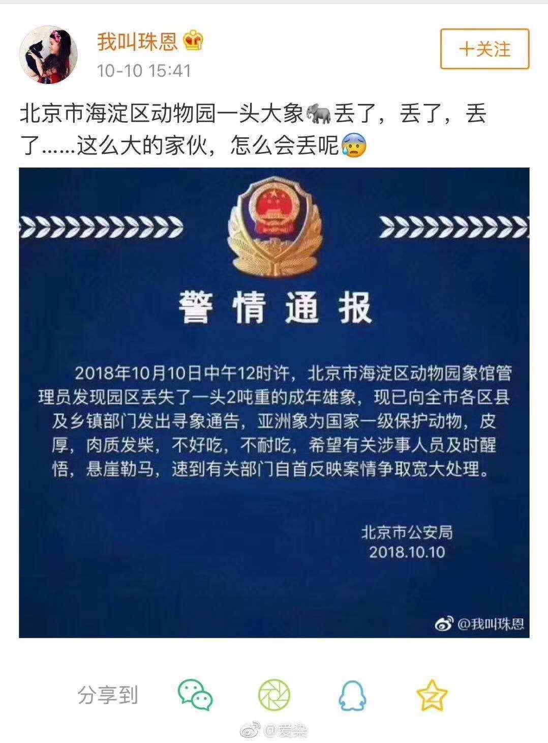北京市一名毛姓男子假造北京公安局的「警情通報」,稱動物園丟了一頭大象。(取自網路...