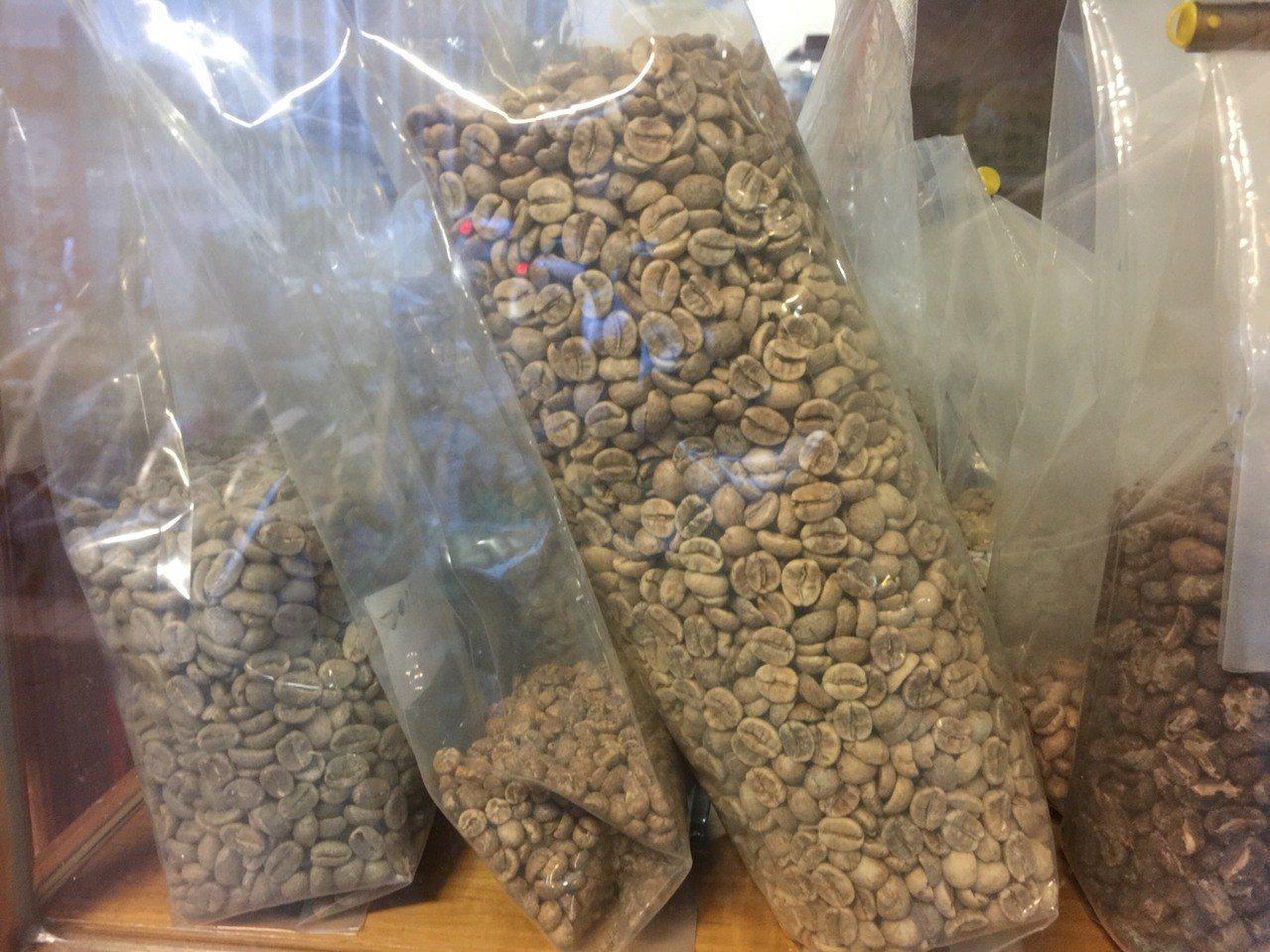 未烘焙過的咖啡原豆,呈現墨綠色,被稱為綠咖啡。圖中咖啡豆為咖啡生豆。記者陳雨鑫/...