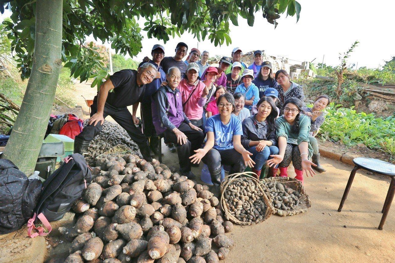 超過40位的熱心網友,今天主動前往烈嶼幫年事已高的芋農洪文居採收芋頭,讓人相當感...